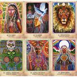 Earth Warriors Oracle by Alana Fairchild