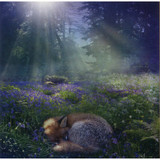 Bluebell Dawn Greeting Card (Blank)