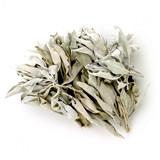 White Sage Leaf Clusters - High Grade (1 oz / 28 grams)
