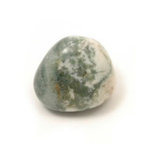 Tree Agate Tumblestone (from India)