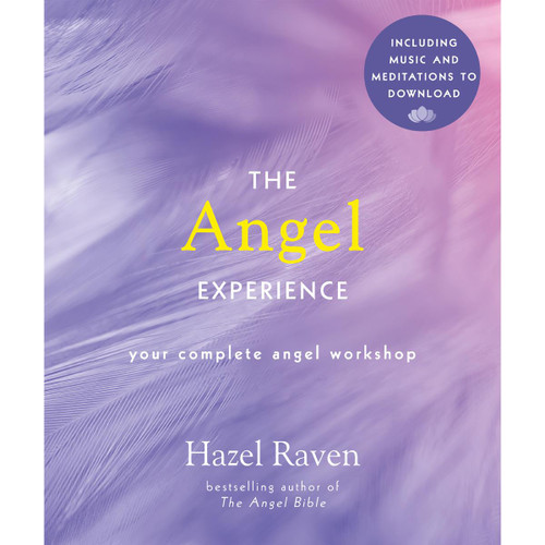 The Angel Experience by Hazel Raven