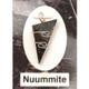 Nuummite Wire Wrap Silver Pendant