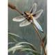 Dragonfly Greeting Card (Sympathy)
