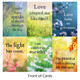 Everyday Miracles Cards by Robert & Hollie Holden