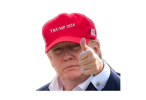 Trump 2024 Car Window Decal