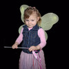 Cheap butterfly and fairy wings