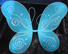 Turquoise butterfly wings