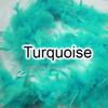 Turquoise feather boas