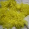 Yellow feather boas