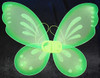 Lime fairy wings