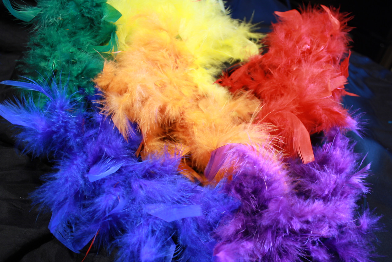 Adult rainbow feather boa