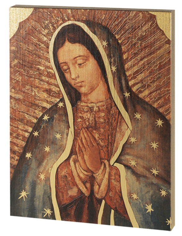 Our Lady of Guadalupe 7x10