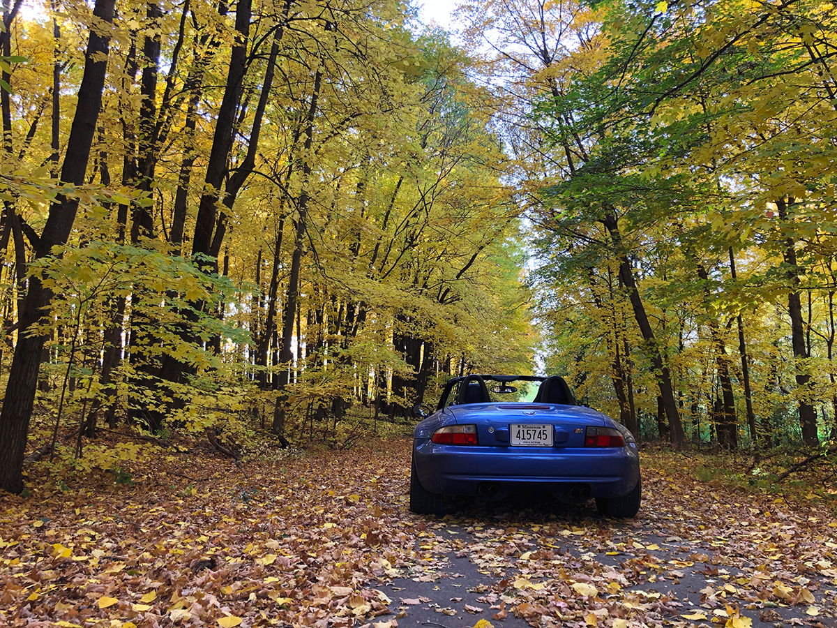On the road: Fall colors near our shop