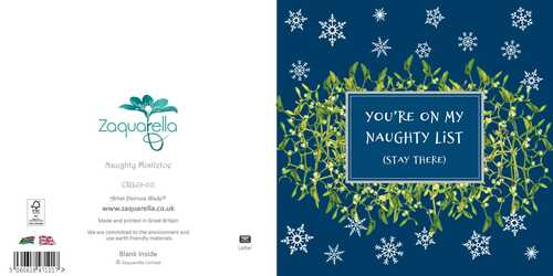 Christmas Greeting Card , You're on my naughty list (stay there) , Mistletoe , Silver foilsnowflakes , Blank Inside , Watercolour Art