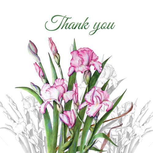 Thank You Greeting Card - Lilac Iris Flower - Thankyou - Thank You - Botanical Watercolour - Original Art Lilac, Single