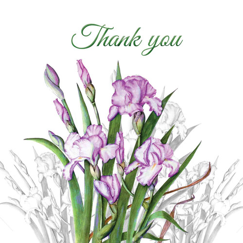 Thank You Greeting Card - Pink Iris Flower - Thankyou - Thank You - Botanical Watercolour - Original Art Pink, Single