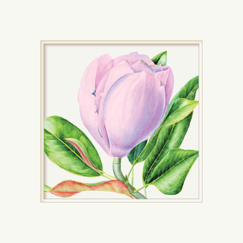 Floral Greeting Card - Pale Lilac Magnolia - Embossed Frame - Botanical Watercolour - Original Art