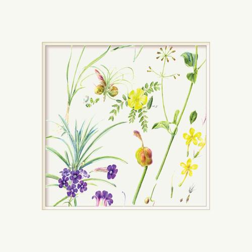 Floral Greeting Card - Wildflowers - Embossed Frame - Botanical Watercolour - Original Art