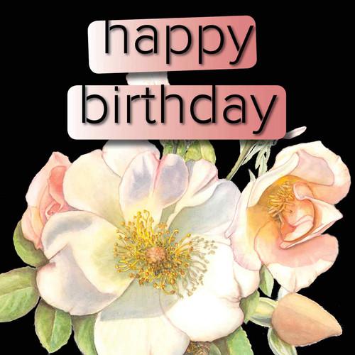 Happy Birthday  Trendy Modern Floral Sally Holmes Rose Black Background Black Text