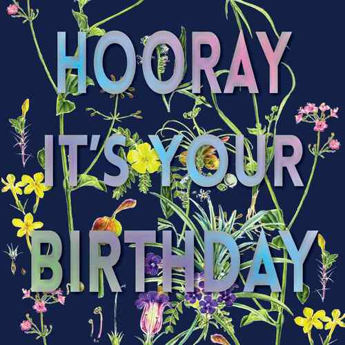 """Happy Birthday  Beautiful Contemporary Floral """"Hooray its your Birthday"""" Wildflowers Navy Blue Background Coloured Silver Foil Text"""