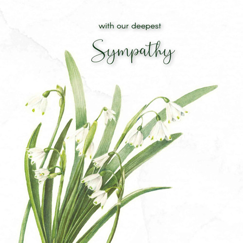 Sympathy greeting card - With deepest sympathy - Snowdrop Flowers - Larger Text - Blank inside