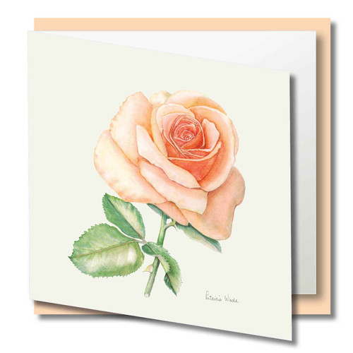 Floral Greeting Card , Peach Rose Flower , Blank Inside , Watercolour Art , Botanical Card to Frame ,