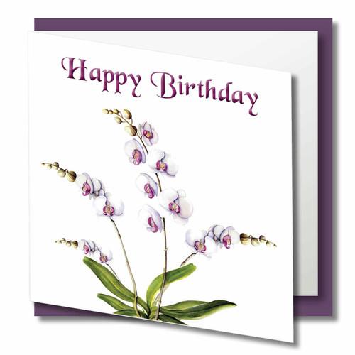 Birthday Greeting Card , Moth Orchid Birthday Day , Happy Birthday , Blank Inside , Botanical Watercolour ,
