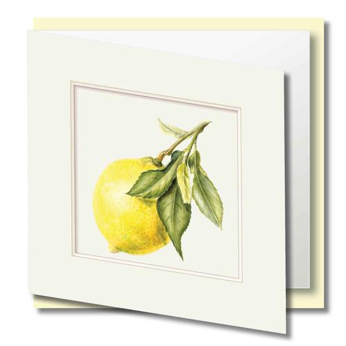 Fruit Greeting Card , Yellow Lemon  , Embossed Frame , Blank Inside , Botanical Watercolour ,