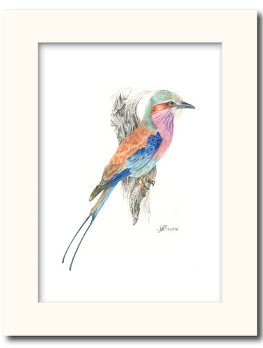 High Quality prints , True to the botanical art. Mounted in off-white 1.4mm mounts. Ready for framing