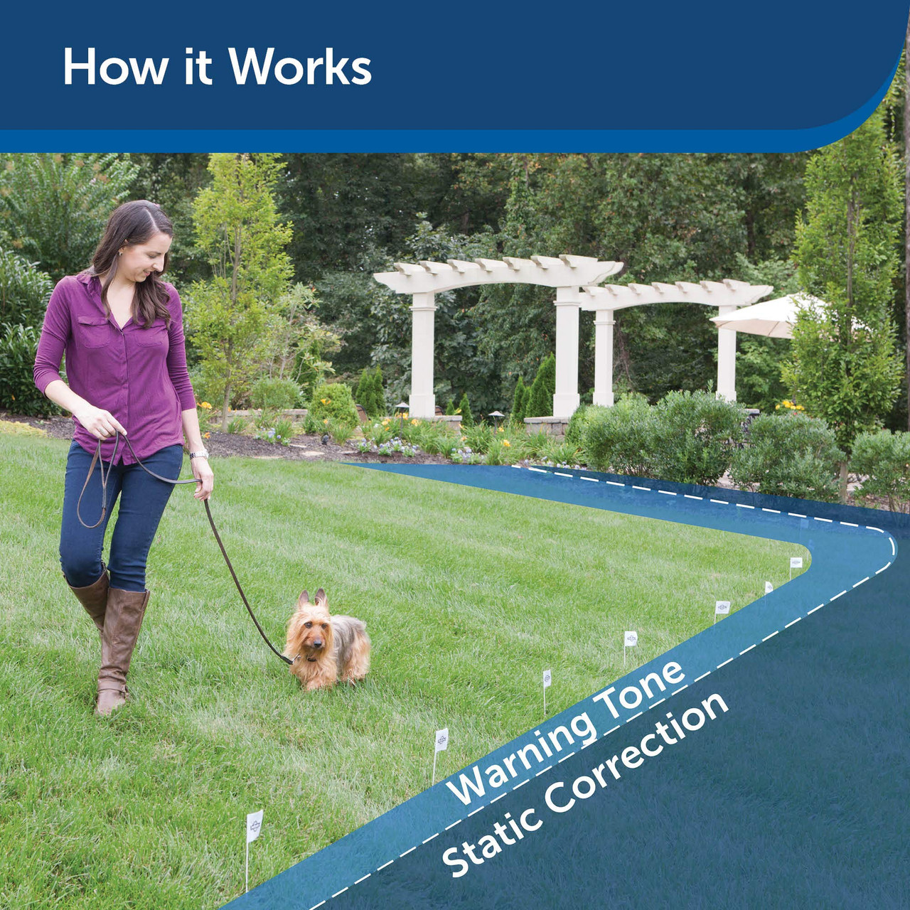 PetSafe In-Ground Fence for Dogs