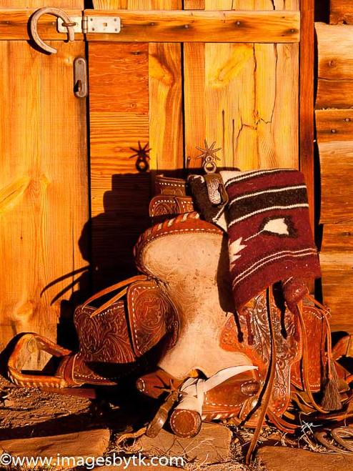 Saddle and Duds - Arizona