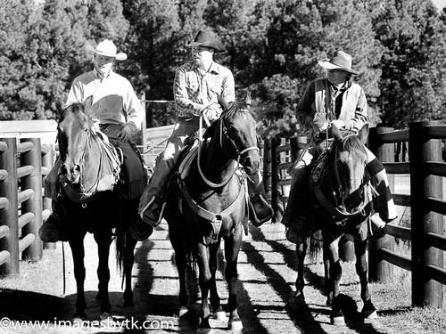 Ranch Planning - Arizona Fine Art Photograhy for Sale