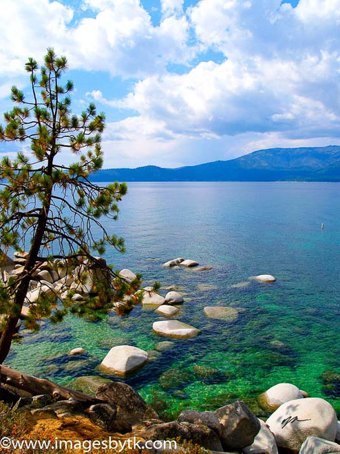 Blue and Green - Lake Tahoe  California Fine Art Photograhy for Sale