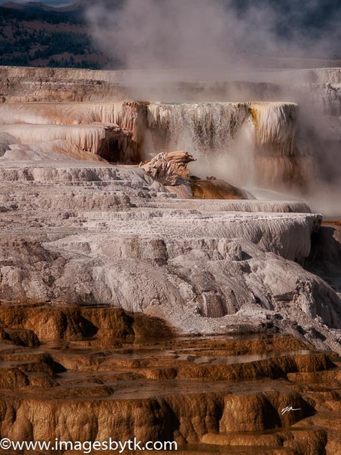 Mammoth Hot Springs - Yellowstone National Park Fine Art Photograhy for Sale