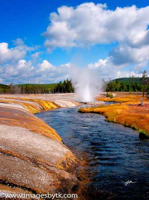 Cliff Geyser  Iron Creek - Yellowstone National Park Fine Art Photograhy for Sale