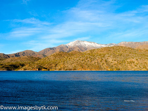 Apache Lake  Seguaro and Snow  Arizona Fine Art Photograhy for Sale