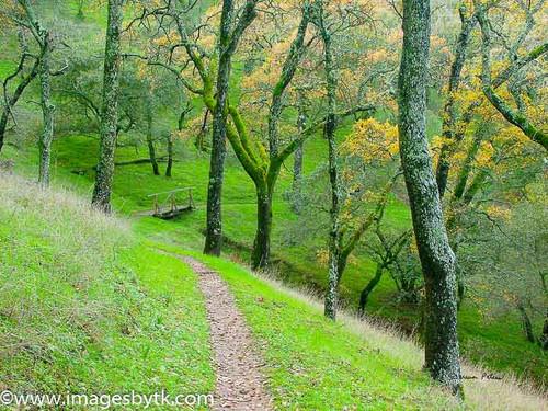 A Bridge To Cross - Mount Wanda - Martinez - California Fine Art Photograhy for Sale