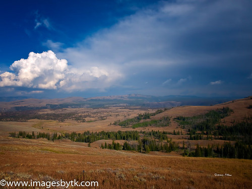 Yellowstone Beauty - Yellowstone National Park Fine Art Photograhy for Sale