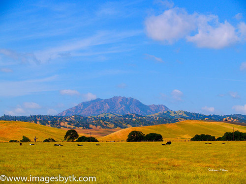 Summer Mt. Diablo From Antioch - California
