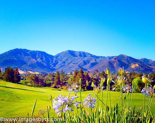 Oakhurst Golf Course and Mt. Diablo - California Fine Art Photograhy for Sale