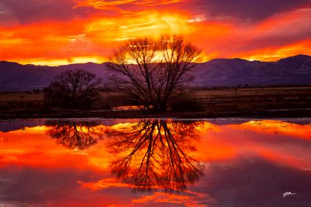 Sunset Reflection - Whitewater Draw - Arizona
