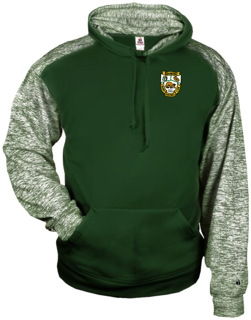 Rochester Aardvarks Performance Fleece Hoodie, Forest/White