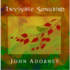 Invisible Songbird CD BUNDLE: 5 CDS & FREE SHIPPING!