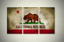 Rustic California State Flag Elegant Wall Art