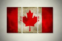 Rustic Canadian Flag Elegant Wall Art