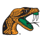 Florida Agricultural & Mechanical University