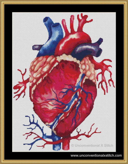 Anatomical Heart cross stitch pattern