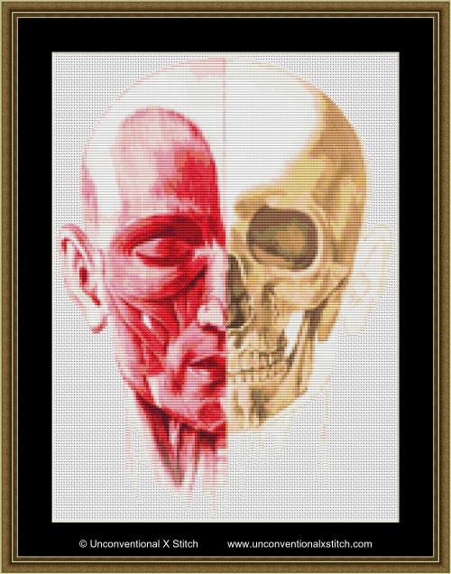 Flesh and Bones cross stitch pattern