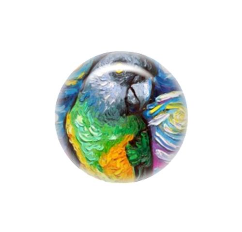 Senegal Parrot needle minder - Aja Trier