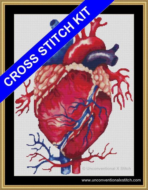 Anatomical Heart cross stitch kit